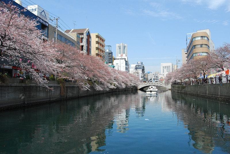 横浜・大岡川 写真